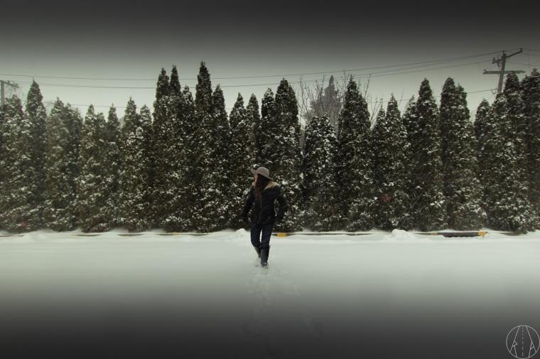 snow-anne